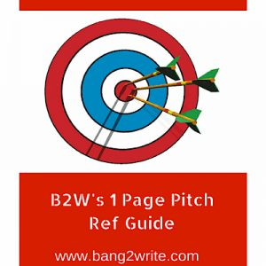 1-Page Pitch Guide